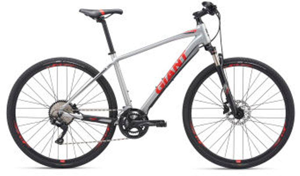 Giant Roam 1 Disc M Silver