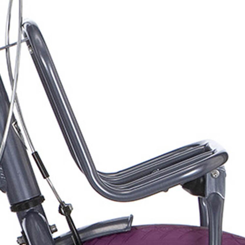 Alpina voordrager 24/26 Clubb purple grey