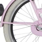 Alpina achterspatbord stang 20 CG lavend pink