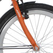 Alpina voorvork 22 Yabber orange