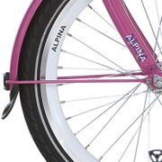 Alpina voorspatbord stang 22 GP candy pink