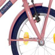 Alpina voorspatbord 16 CG soft pink matt