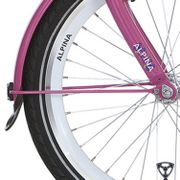 Alpinachterspatbord stang set 18 GP candy pink