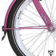 Alpinachterspatbord stang set 22 GP candy pink