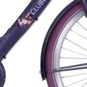 Alpinachterspatbord set 24 Clubb purple grey