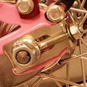Alpina achterwielspanner fiets OEM2