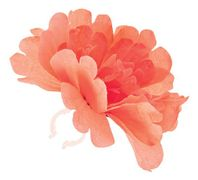 Basil losse bloem Peony or