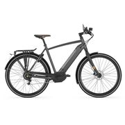 Gazelle CityZen Speed 380 H53 Eclipse black S10 (mat)