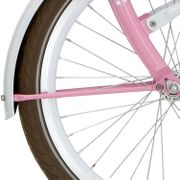 Alpinachterspatbord stang set 20 Clubb roze