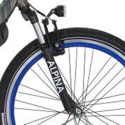 Alpina v voorvork 24 Trial black matt
