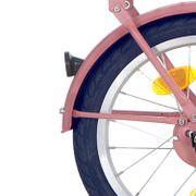 Alpina achterspatbord 16 CG soft pink matt