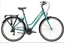 Trek Ibiza 21 Speed Midstep 45L Slate Green