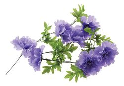Basil Bloemslinger Peony Lavendel