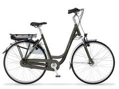Multicycle Legend, Shitake Satin