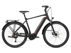 Giant AnyTour E+ 3, Incl. 500Wh, Rosewood