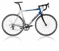 Gazelle Sillente TDF, Team wit/yes blauw
