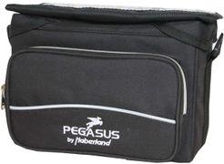 Pegasus stuurtas Midi NG 2014