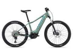 Vall-E+ 1 25km/h S Fanatic Teal