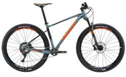 Giant Fathom 29er 2 GE XL Gray