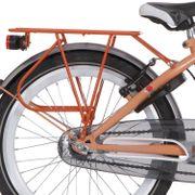 Alpina drager 22 GP oranje