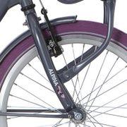 Alpina voorvork 20 Clubb purple grey