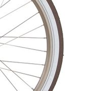 Cortina velg J19SZ gold matt
