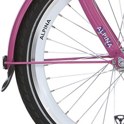 Alpina voorspatbord stang 20 GP candy pink