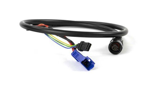 KABELBOOM ENV MAIN WIRE HARNESS 600