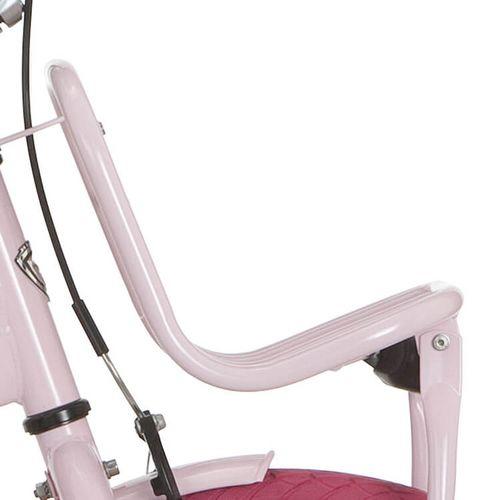 Alpina voordrager 22Clubb l roze